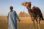 Un chamelier se tient devant les pyramides de Gizeh, Égypte. .