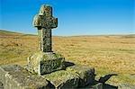 La Croix en pierre du tombeau de Childe couvert de lichen se dresse sur la Mire de Tor de Fox