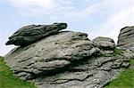 Haytor,Dartmoor,South Devon,England