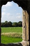 Shrewsbury Shropshire, Angleterre. Vue sur la campagne du Shropshire rustique des ruines de Haughmond Abbey, un 12ème siècle Augistinian abbaye près de Shrewbury.