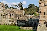 Shrewsbury Shropshire, Angleterre. Ruines de la salle capitulaire de l'abbaye de Haugmond, un 12ème siècle Augistinian abbaye près de Shrewbury.