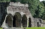 Shrewsbury Shropshire, Angleterre. Le portique élégant de la salle capitulaire de l'abbaye de Haugmond, un 12ème siècle Augistinian abbaye près de Shrewbury.