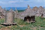 Les cabanes de l'herbe et les magasins de grenier un règlement Nyangatom. Le Nyangatom ou Bume sont une tribu nilotique de pasteurs semi-nomades qui vivent le long des rives du fleuve Omo dans le sud-ouest de l'Éthiopie.
