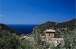 Villa et olive groves près de Estellencs