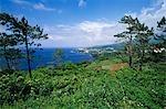 Littoral près de Sao Roque sur l'île de Pico aux Açores
