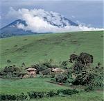 Riche, mais un sol volcanique friable entoure le volcan du Mont Meru (14 980 pieds). Les Prairies sont broutés par le bétail appartenant à la Wa-Arusha, un peuple de langue maa visant les Masaï, qui également jusqu'à la terre. .