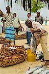 East Africa; Tanzania. A fishermen buying & selling fish at a fish market in Nungwi Village,Zanzibar Island