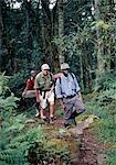 On the forest trail at 8,000 feet between Nyakalungija and Nyabitaba Hut.