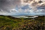 Co Galway, Irlande ; Vue depuis le Sky Road près de la ville de Clifden