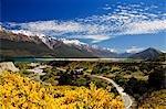 Nouvelle-Zélande, île du Sud. Fleurs d'été vif et neige capped montagnes près de Queenstown.