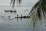 Peru,Amazon,Amazon River. Ferryboats carrying passengers across the Amazon River.