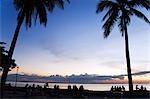 Philippines,Luzon,Manila. Palm trees on Manila Bay at sunset.