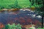 Mouche de pêche du saumon sur la rivière Awe
