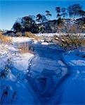 Étang de neige et de glace sur la rivière Tweed.