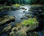 River Esk.