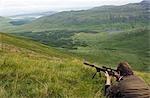 S'apprête à prendre une photo à un cerf élaphe mâle sur domaine Benmore