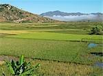 Reisfelder und Highland Dorf südlich von Antsirabe, Madagaskar.