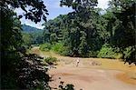 Malaisie, Bornéo, Sabah. Un sédiment lourde rivière ombragée par rainforest bankside rend une cicatrice brune à vert.