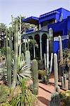 Le Jardin Majorelle subtropical dans la Ville Nouvelle de Marrakech. Conçu par le peintre français Jacques Majorelle, qui y vécut de 1922 à 1962, elle est maintenant détenue par le couturier Yves Saint-Laurent. Le bâtiment central bleu est également maison pour le Musée des Arts islamiques.