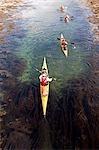 Norway,Nordland,Helgeland. Sea kayaking viewed from above.