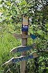 Norvège, Nordland, Helgeland, l'île de Rodoy. Sentier pédestre sur l'île de Rodoy.