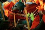 Laikipiak Maasai Girl Dancing