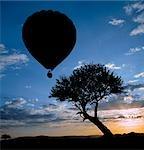 Un ballon à air chaud prend son envol dans le Masai Mara Game Reserve que le soleil se lève sur les collines lointaines.