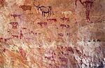 Rock, Malerei, Darstellung in der Jebel Acacus in der libyschen Sahara Libyen Hausrind