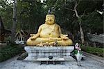 Statue de Bouddha au Wat Pharathat Pha Ngao, Chiang Saen, Province de Chiang Rai, Thaïlande