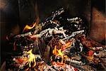 Bois de chauffage brûlant, gros plan