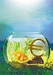 Symbole Euro dans un bol de poissons.