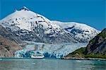 Royal Carribean cruise ship *Serenade of the Seas* in Endicott Arm near Dawes Glacier, Tracy Arm- Fords Terror National Wilderness, Southeast Alaska