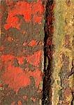 Ébréché la peinture rouge sur la surface, gros plan
