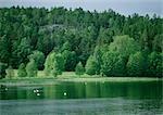 Sweden, lake