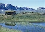 Scandinavia, log cabin in mountains
