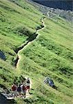 France, Savoie, hikers walking on footpath through green hillside