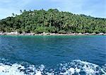 Malaisie, couvert de palm tree island