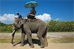 Tourists Riding Elephant, Thai Elephant Conservation Center, Lampang, Lampang Province, Northern Thailand, Thailand