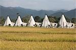 Resort, Chiang Mai, Chiang Mai Province, Northern Thailand, Thailand