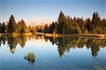 Schwabacher Landing and Grand Tetons, Grand Teton National Park, Wyoming, USA