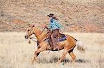Cow-girl cheval Quarter Horse, Wyoming, USA