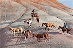 Cowboys während Horse Drive in Badlands, Wyoming, USA