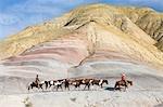 Cowboys Fahrt Herde von Pferden durch die Badlands, Wyoming, USA