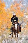 Cowboy Reiten Pferd, Wyoming, USA