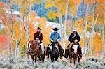 Cowgirls und Cowboys auf Pferden, Wyoming, USA