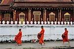 Buddhist Monks Collecting Morning Alms, Luang Prabang, Laos