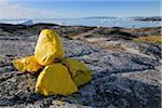 Yellow Path Markings, Ilulissay Icefjord, Ilulissat, Disko Bay, Greenland