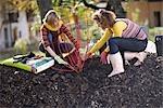 jardinage automnal