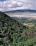 Die Welt berühmten Ngorongoro Crater wurde 1978 zum Weltkulturerbe erklärt. Die 102-Quadrat-Meile Kraterboden ist spektakulär für Wildtiere. Der Krater ist in der Tat eine 'Caldera' ungebrochene, unflooded größte Caldera der Welt, wurde als eine gewaltige Explosion zerstört die Wände eines Vulkans, der etwa 15.000 Meter hoch stehend zweieinhalb Millionen Jahren gebildet. .