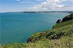Au Royaume-Uni, pays de Galles, Pembrokeshire. Vue sur baie de Newport de Dinas Head et le Pembrokeshire Coastal Path.